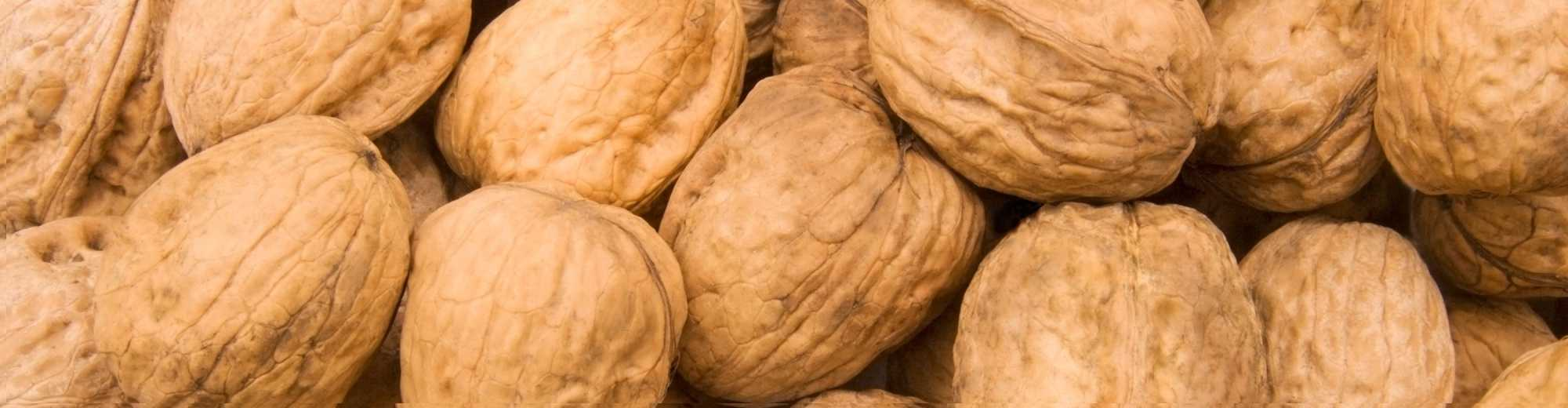 Walnut Varieties-from Chandlers to Waterloo