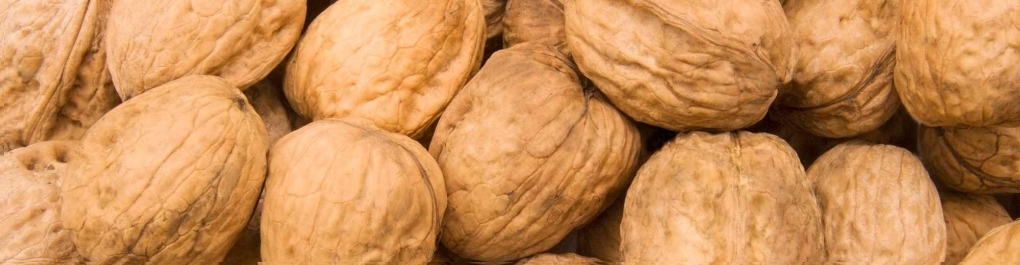 Walnut Varieties-from Chandlers to Waterloo